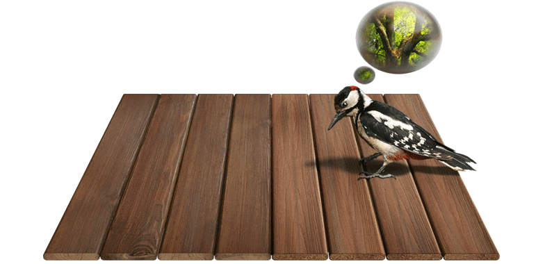 Wood Vs Fiberon Like Composite Decking