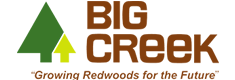 Logo big creek